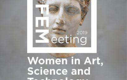 FEMeeting 2019